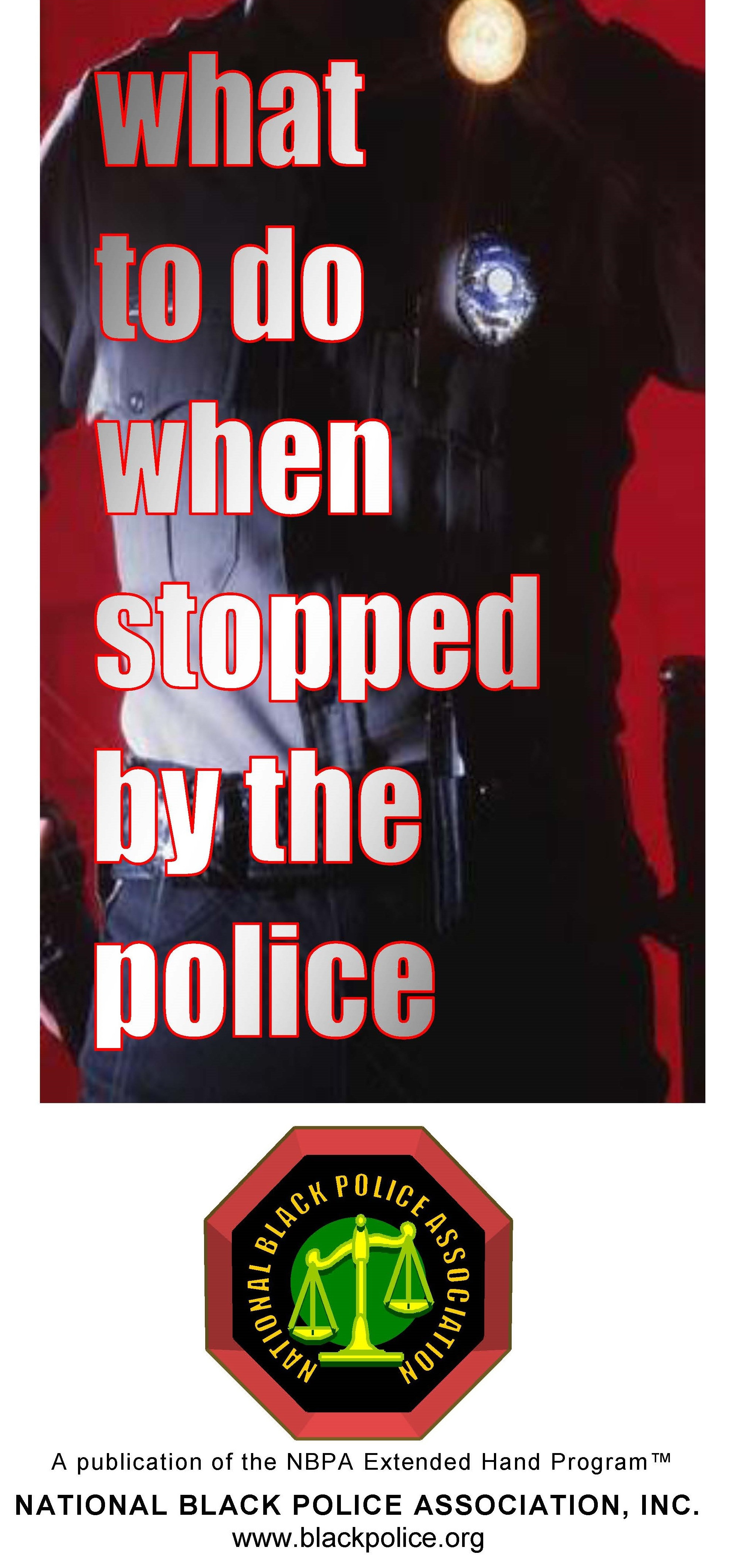 Police Stop 1